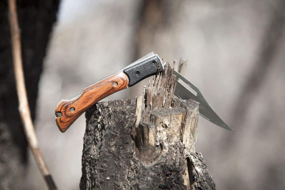 Best Pocket Knife Brands - bladeprotection