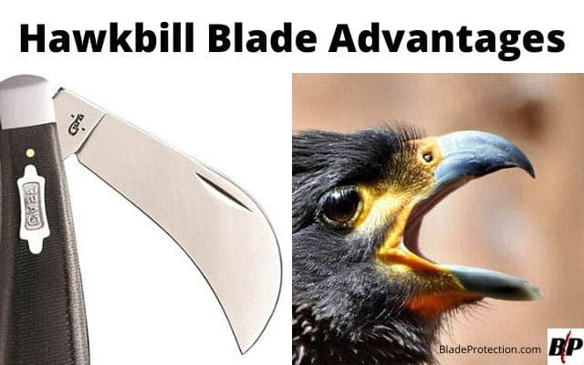 Hawkbill Blade Advantages